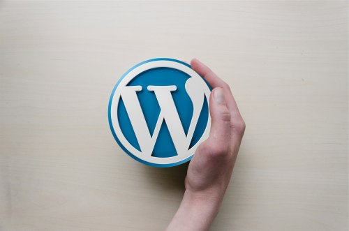 WordPress Anbieter Test
