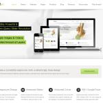 Avada Premium WordPress Theme
