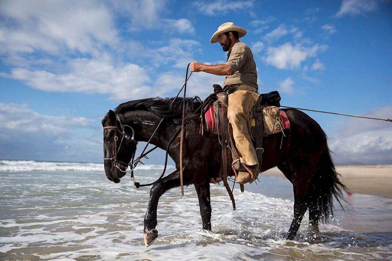 100 kostenlose Pferde Icons gratis Blog oder die Webseite